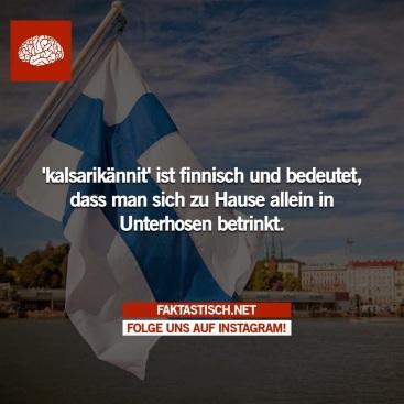 Die Finnen spinnen... ;-)
